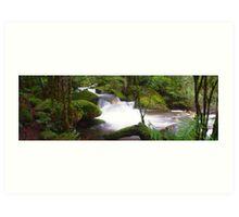 Taggerty River Cascades Art Print