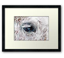Blue-eyed Framed Print