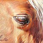 Palomino close-up by Elena Kolotusha