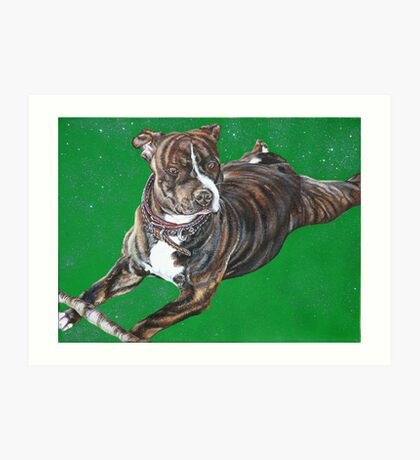 'Chaos' - The Staffordshire Bull Terrier Art Print