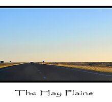 Hay Plains by elyglen
