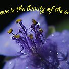 Love is the Beauty of the Soul by BobJohnson