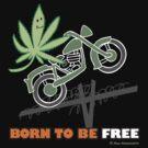 BORN TO BE FREE by Max Alessandrini