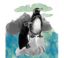 Penguins Watercolored Photographic Print