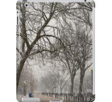 DC Winter iPad Case/Skin