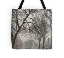 DC Winter Tote Bag