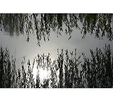 Reflections in the Lake Photographic Print