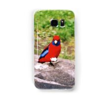 Crimson Rosella - South Australia Samsung Galaxy Case/Skin