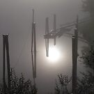 Misty Morning 1 by satsumagirl
