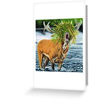 Feed me to the forrest. Greeting Card