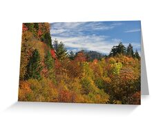 Fabulous Fall II Greeting Card