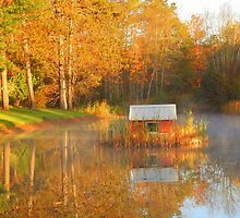 My Golden Pond by Karen Cook