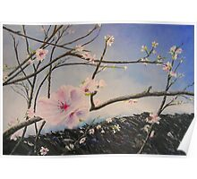 Arrival of Spring  Poster