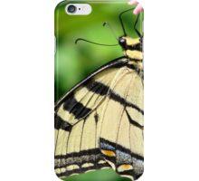 Beauty has wings iPhone Case/Skin