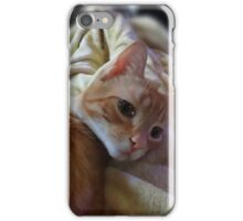 Cute Kitty iPhone Case/Skin