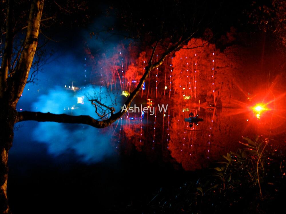 Enchanted Forest by Ashley W