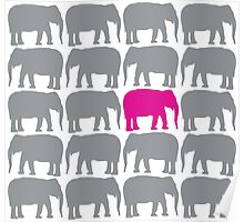 One Pink Elephant in the Herd Poster