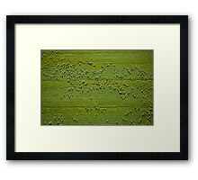 Sheep from Above Framed Print