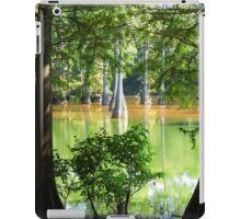 Cypress In Frame iPad Case/Skin