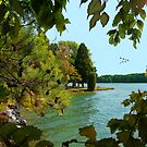 The Little Tennessee River by Roger Sampson