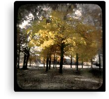 Fall at Long Lake Canvas Print
