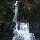 High Falls #3 by Tammy F