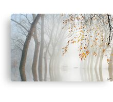 Misty Waters Canvas Print