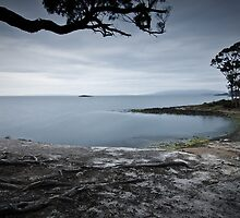 Towards Storm Bay, Tasmania by NickMonk