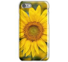 Here comes the Sun . . . iPhone Case/Skin