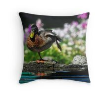 Morning Tai Chi Throw Pillow