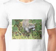 Sanibel Coon Unisex T-Shirt