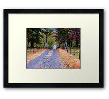Walking Down Memory Lane Framed Print