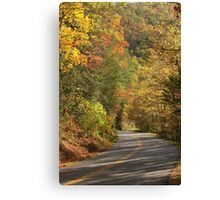 Beautiful Drive Canvas Print