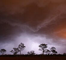 Stormy Night by Mark Ingram