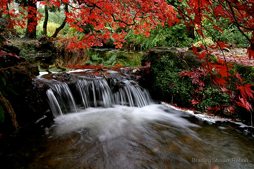 """""""Autumn's Water Fall in Red"""" by Bradley Shawn  Rabon"""
