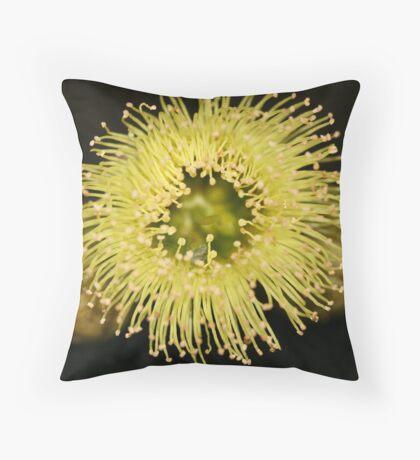 Firecracker Throw Pillow