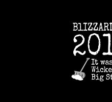 BLIZZARD OF 2015 - It was a  Wicked Big Stawm! by sunshinedesign