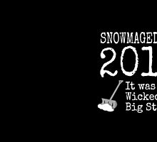 SNOWMAGEDDON 2015 - It was a Wicked Big Stawm! by sunshinedesign