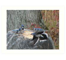 Battle of the Blue Jays Art Print