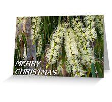 Melaleuca Christmas Card Greeting Card