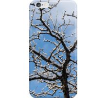 Tree and Sky iPhone Case/Skin