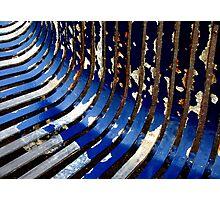 Metal ribs Photographic Print