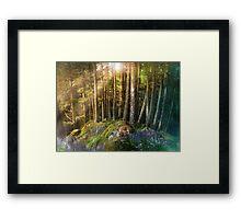 Fox Haven Framed Print