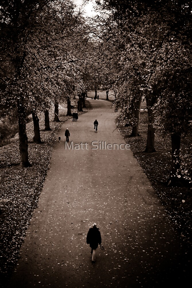 Going for a walk in Autumn time by Matt Sillence