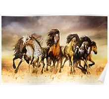 Magnificent Seven Galloping Horses Full Color  Poster