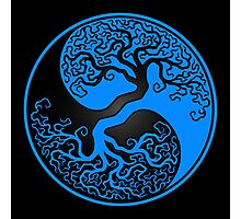 Blue and Black Tree of Life Yin Yang Photographic Print