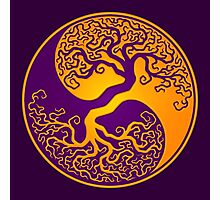 Purple and Yellow Tree of Life Yin Yang Photographic Print