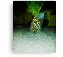 Pineapple Palm Tree!! Canvas Print