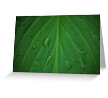 Passing Rain Greeting Card