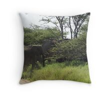 Crossing our path Throw Pillow